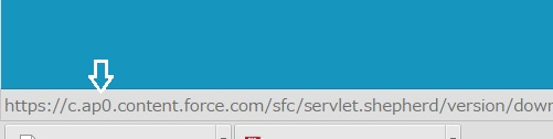 Salesforceインスタンス