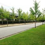 Runtripに投稿しました:倉敷スポーツ公園「3種の路面から選べるコース」