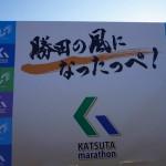 2016/1/31勝田全国マラソンの結果
